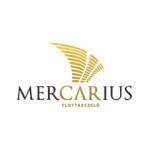 Mercarius flottakezelő műhelybővítése